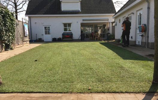Gras onderhoud