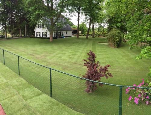 Graszoden leggen Tilburg | 2